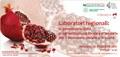 Laboratori regionali: la governance della programmazione locale partecipata per il benessere sociale e la salute