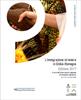 L'immigrazione straniera in Emilia-Romagna - Edizione 2017